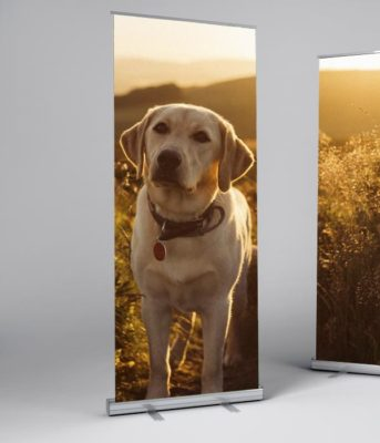 SD Retractable Banner – Up to 60″x92″ (Silver)